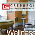 wellness,fürd�szoba,zuhanyzó,fürd�kád,hidromasszázs